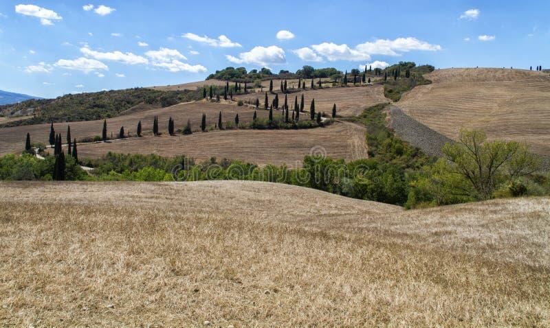 Классический ландшафт Тосканы стоковая фотография rf