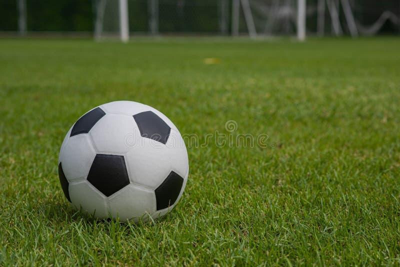 Классический черно-белый футбол помещенный на тангаже травы стоковые фотографии rf