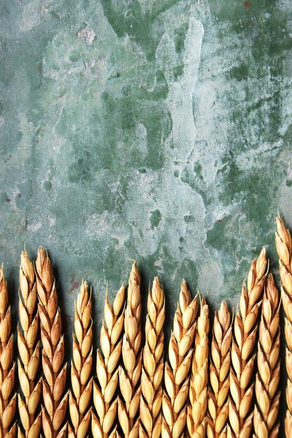 Классы сказанные по буквам на зеленой предпосылке стоковая фотография
