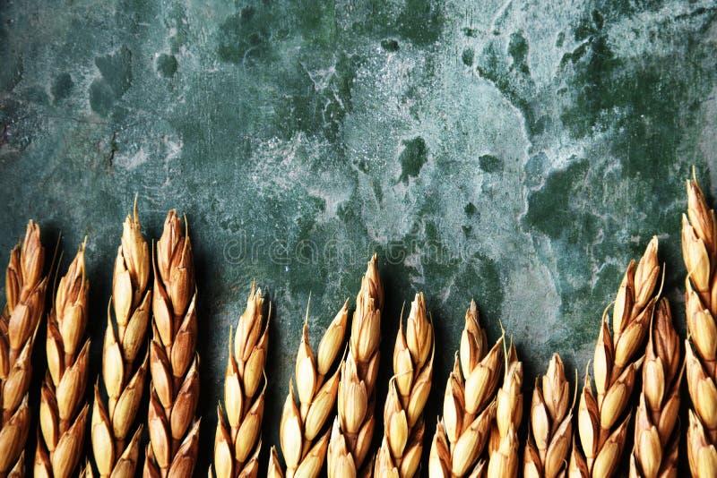 Классы сказанные по буквам на зеленой предпосылке стоковое фото