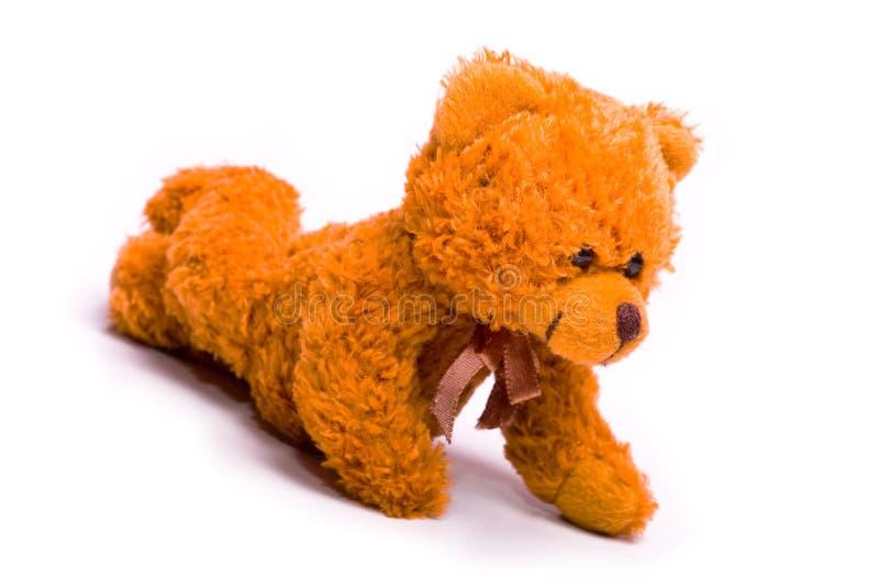 класть медведя стоковая фотография