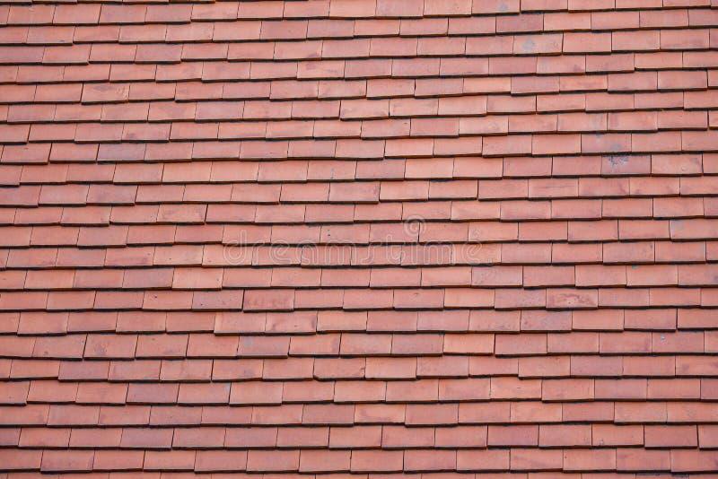 Клейкая крыша стоковые фото