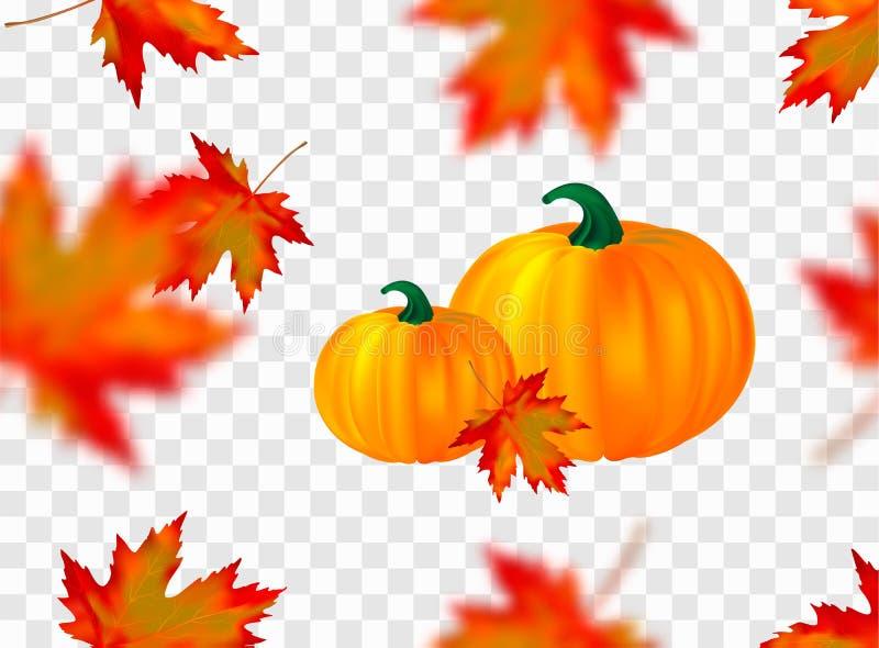 Кленовые листы и тыквы безшовной картины яркие оранжевые красные запачканные падая изолированные на прозрачной предпосылке Сезонн бесплатная иллюстрация