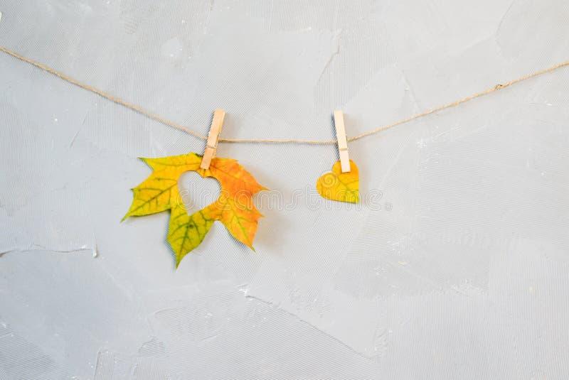 Кленовые листы на зажимках для белья с осенью слова стоковые фотографии rf