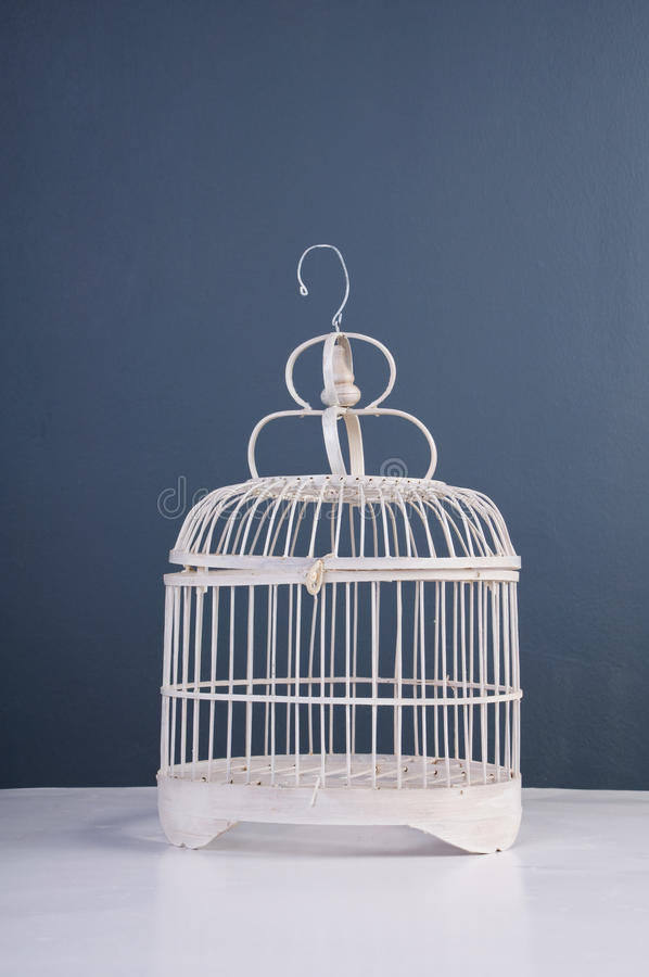клетка птицы стоковое фото