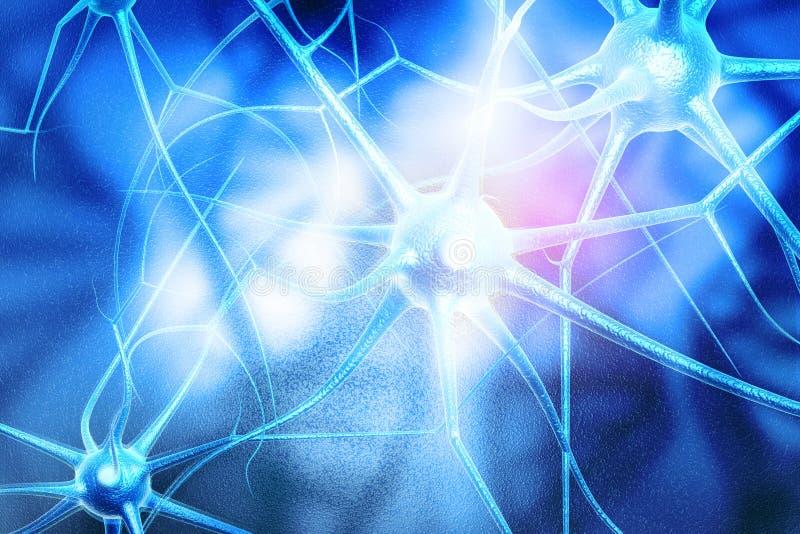 Клетки нейрона иллюстрация штока