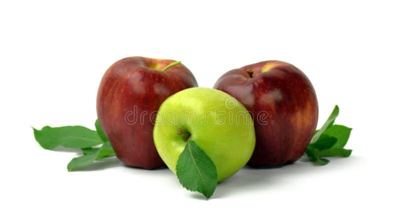 клеть яблок органическая изолировано Fruits предпосылка варить Вытрезвитель стоковые изображения