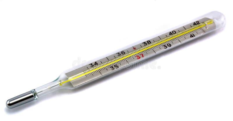 клинический термометр стоковая фотография rf