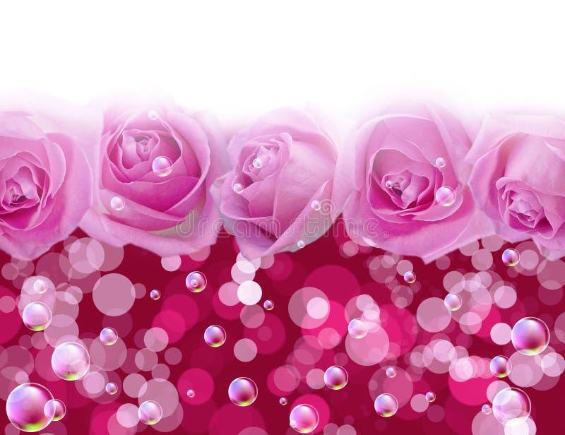 клокочут розы иллюстрация штока