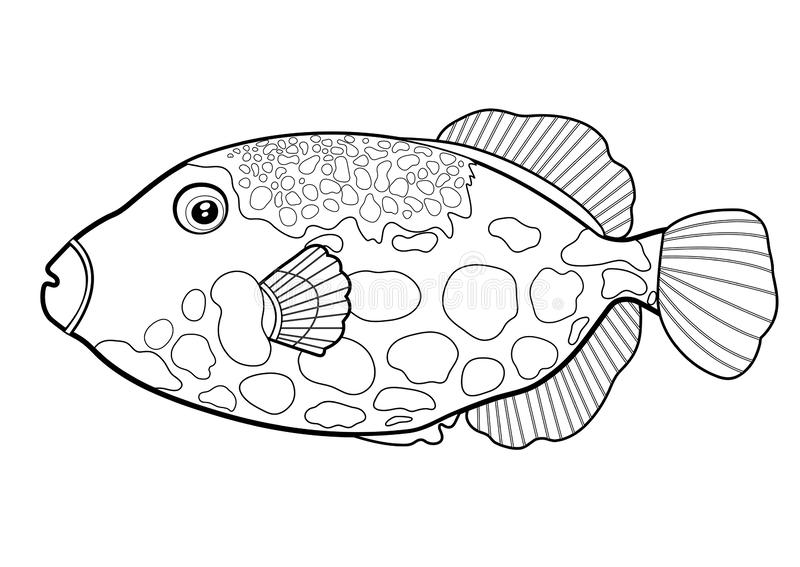 Клоун рыб Triggerfish, линия морское животное руки мультфильма силуэта вычерченное, характер контура морской, расцветка, эскиз Пл иллюстрация вектора