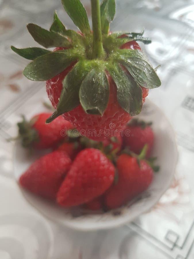 Клубника, ягода стоковые изображения