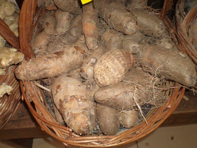 Клубни, съестные корни Ям или карамелька стоковая фотография
