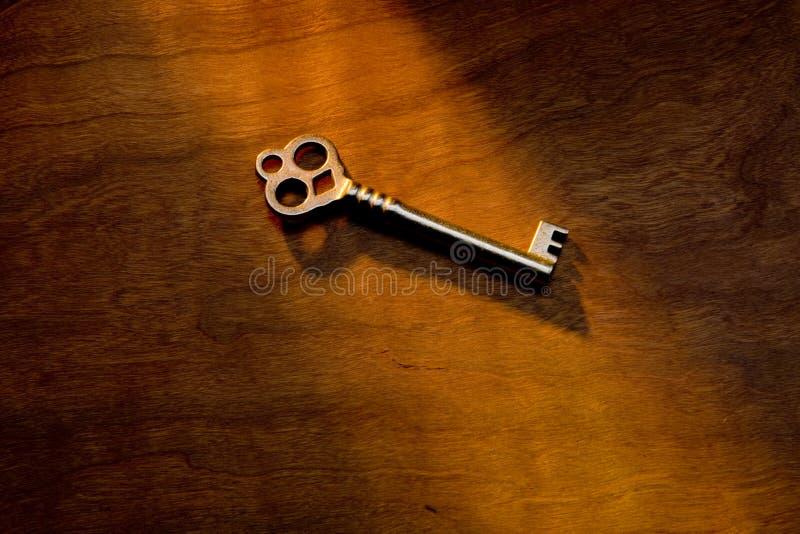 ключевой скелет стоковая фотография