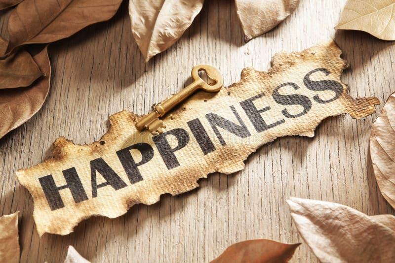 ключ счастья принципиальной схемы к стоковое фото