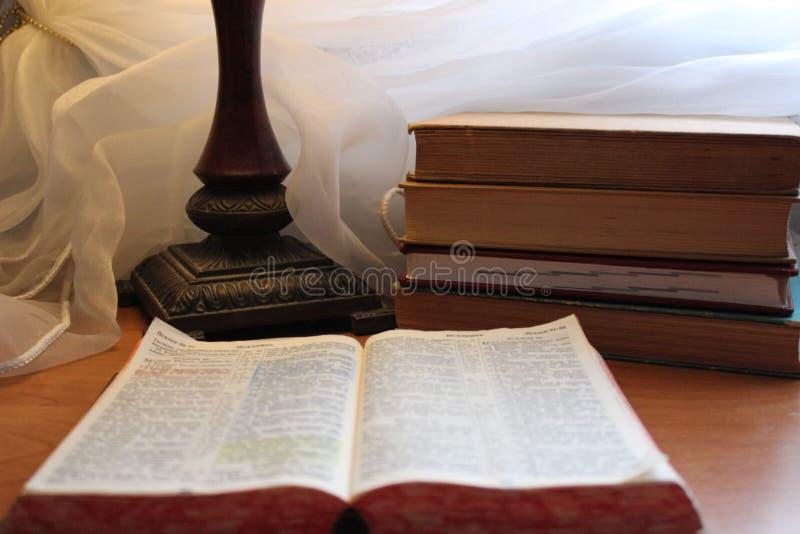 Книга книг чтения дома любимая стоковое изображение rf