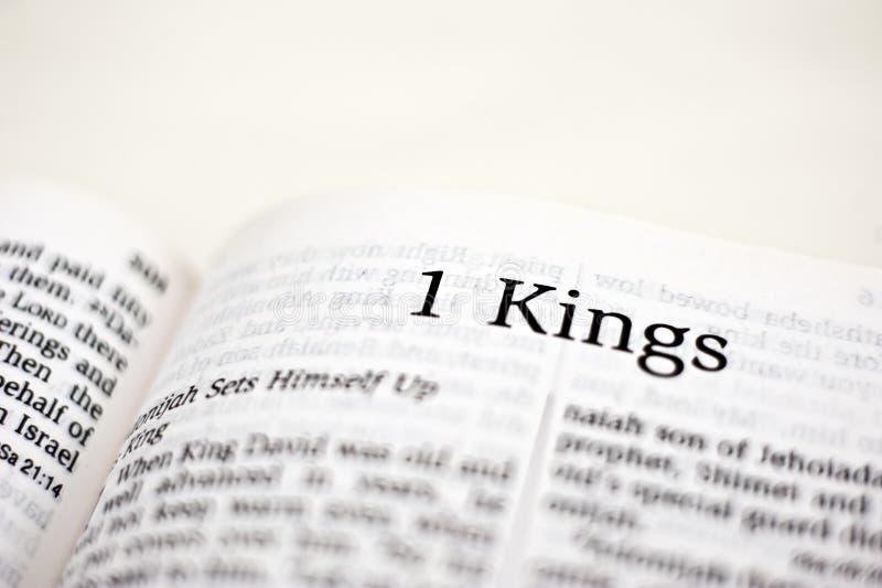 Книга королей 1 стоковая фотография