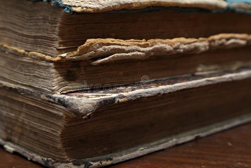 книга старая Листы старой книги Макрос стоковое изображение