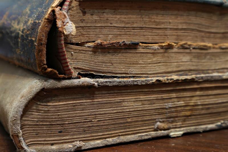 книга старая Листы старой книги Макрос стоковые фото