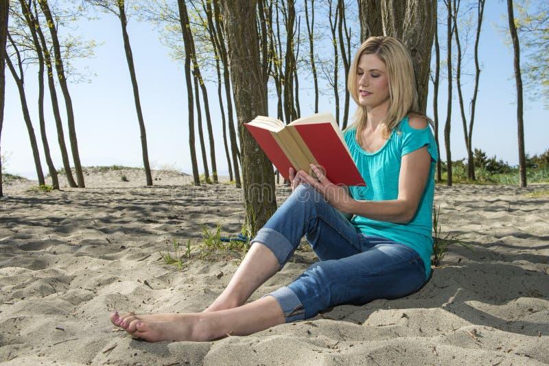 Книга чтения женщины стоковое фото rf