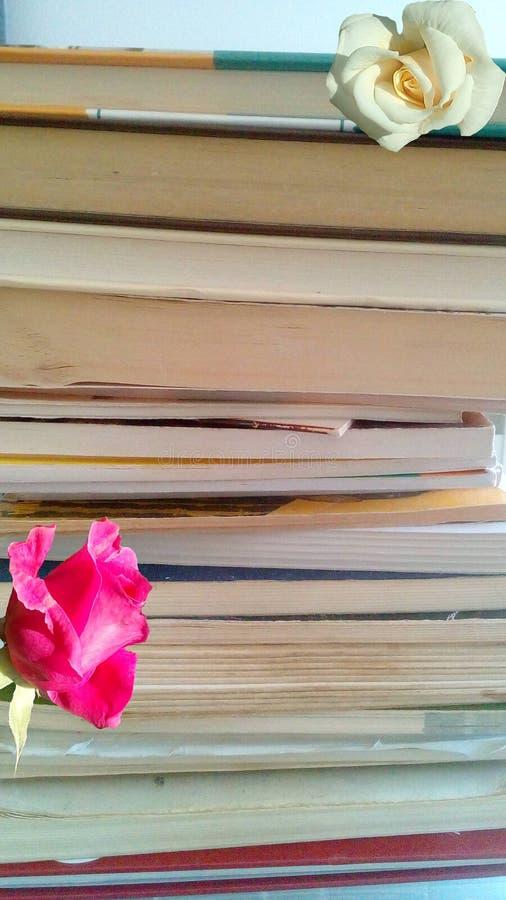 Книги на куче стоковое изображение