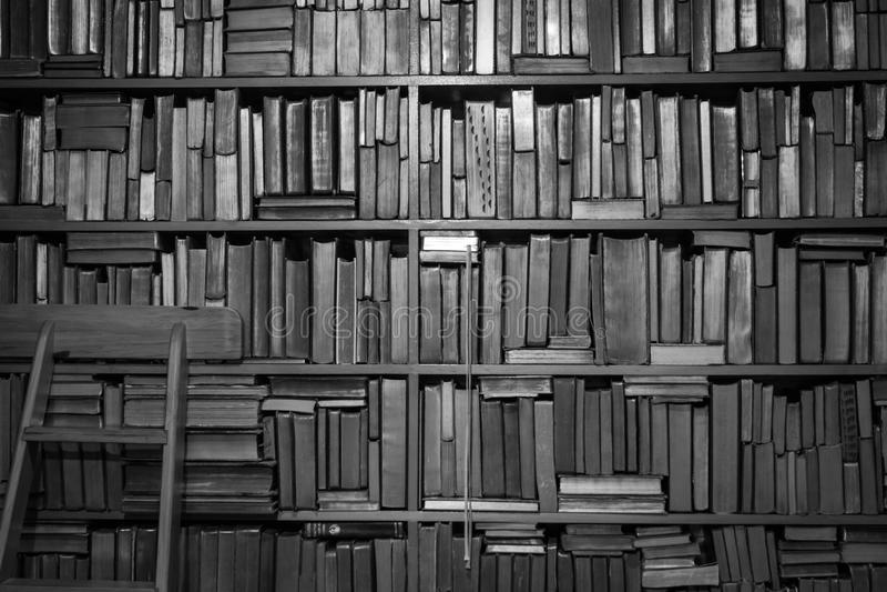 Книги на bookcase в черно-белом стоковое фото