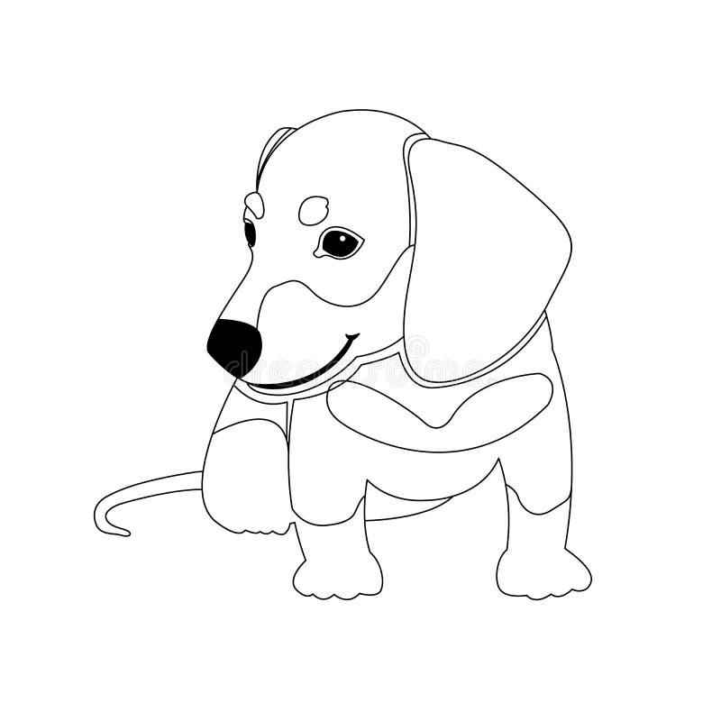 Книжка-раскраска вектора щенка таксы бесплатная иллюстрация