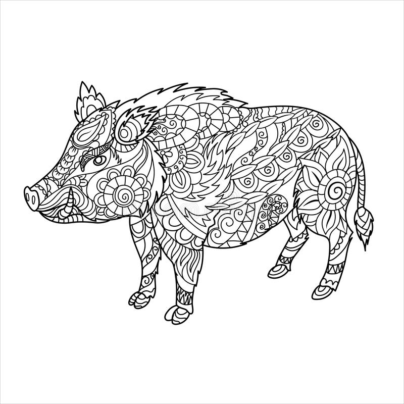 Книжка-раскраска дикого кабана Животное леса в стиле doodle расцветка Анти--стресса для взрослого Изображение Zentangle вектор иллюстрация вектора