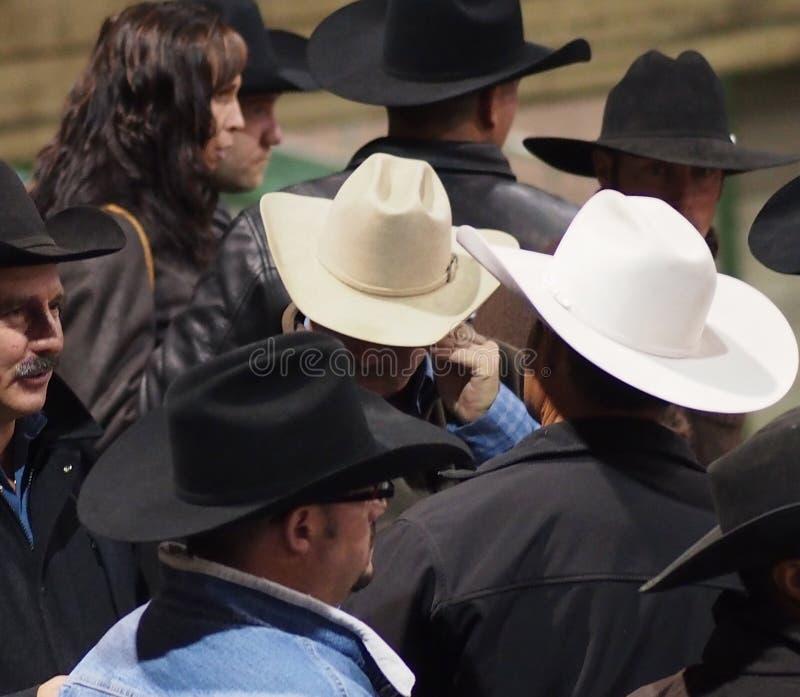Ковбои с ковбойскими шляпами стоковое изображение rf