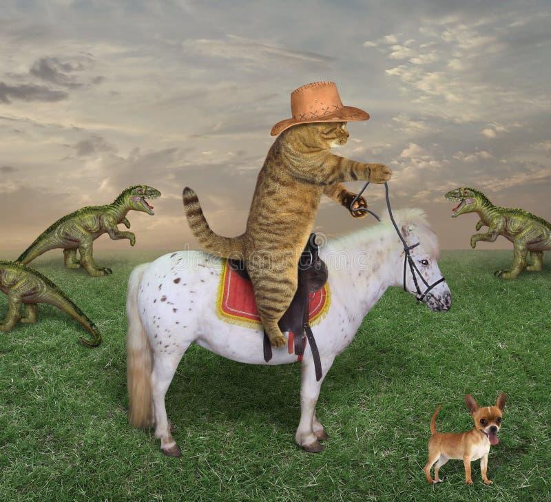 Ковбой кота пасет драконов стоковые изображения rf