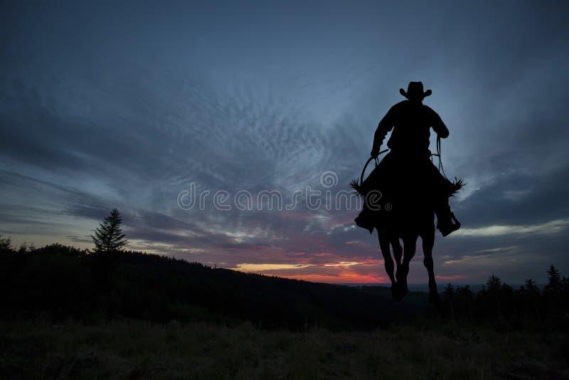 Ковбой на лошади стоковое изображение