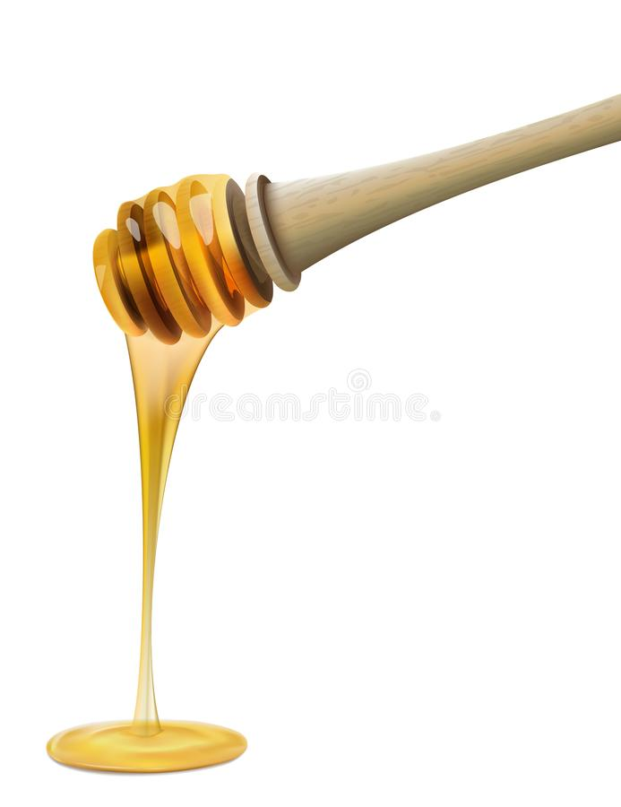 Ковш меда с пчелой на белой предпосылке иллюстрация вектора