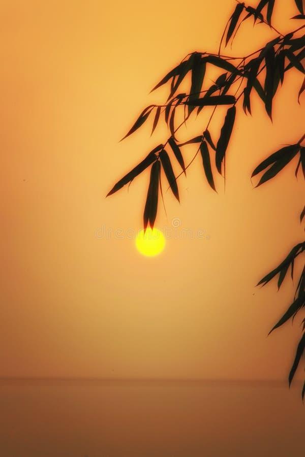 Когда солнце пойти вниз стоковые фотографии rf