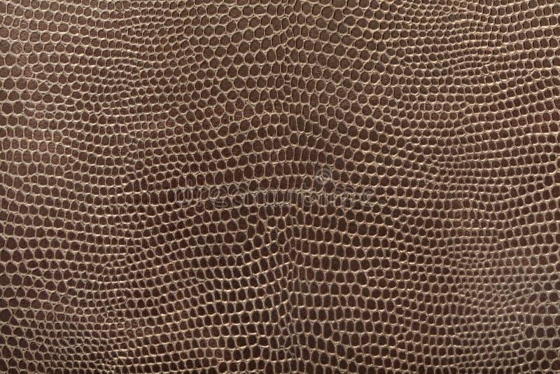 кожаная текстура гада стоковое изображение rf