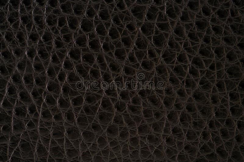 кожаная текстура стоковые изображения
