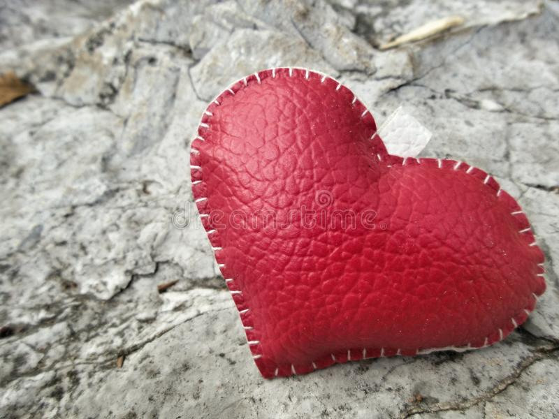 Кожаное сердце картинки