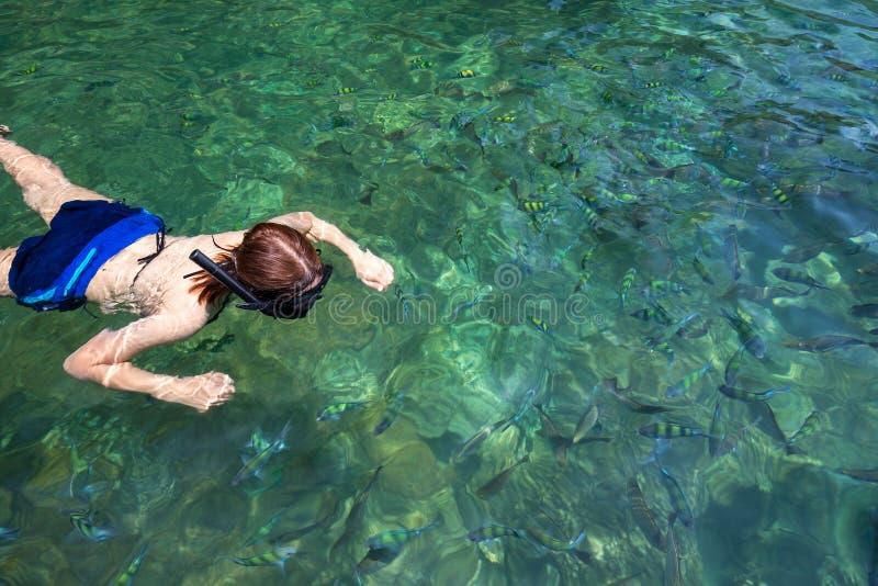 Кожа азиатской девушки белая наслаждается со спортом носит подводное плавание стоковое изображение rf