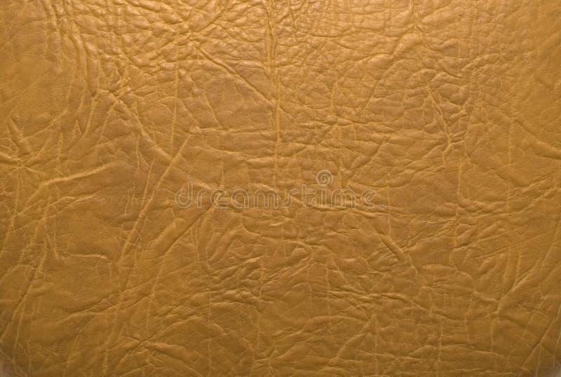 кожа предпосылки стоковое изображение rf