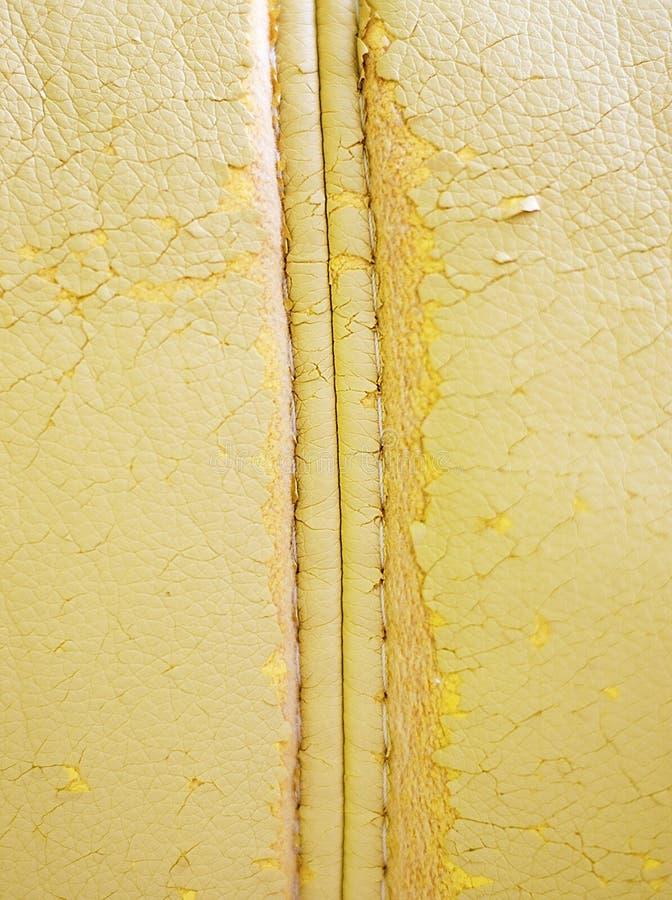 кожа стоковые фотографии rf