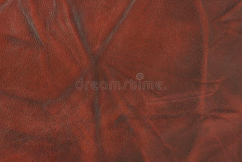 кожи несенный красный цвет вне стоковые фотографии rf