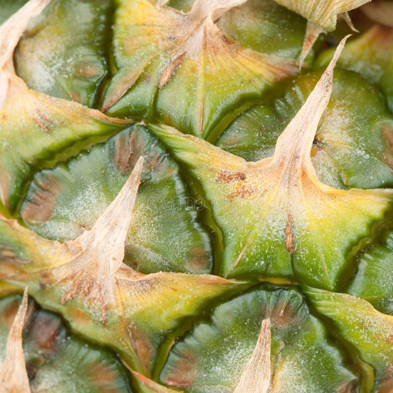 кожура ананаса макроса еды собрания стоковое изображение