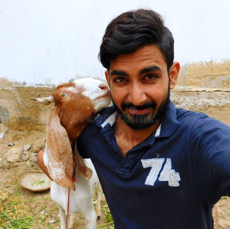 Коза пахнуть Boy& x27; сторона s стоковая фотография