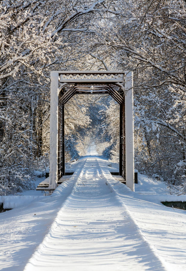 Козл поезда Snowy стоковое изображение