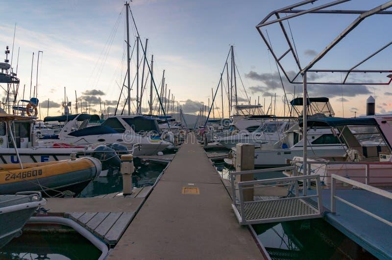 Койка Марины пункта Abel с яхтами на заходе солнца, сумраке стоковое изображение
