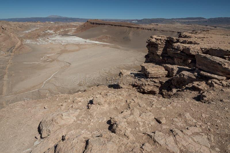 Койот del Quebrada del Kari Piedra - San Pedro de Atacama, Чили стоковая фотография rf