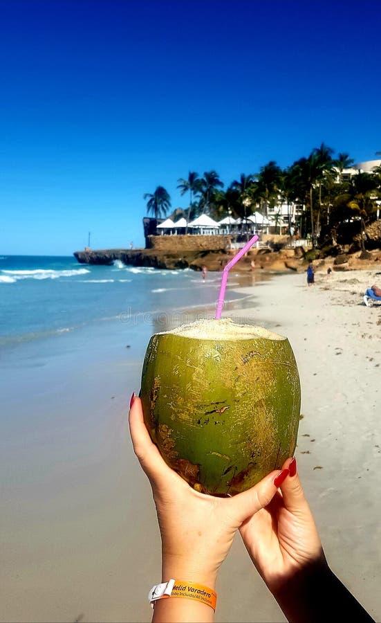 Кокосовый сок на пляже города Варадеро стоковая фотография