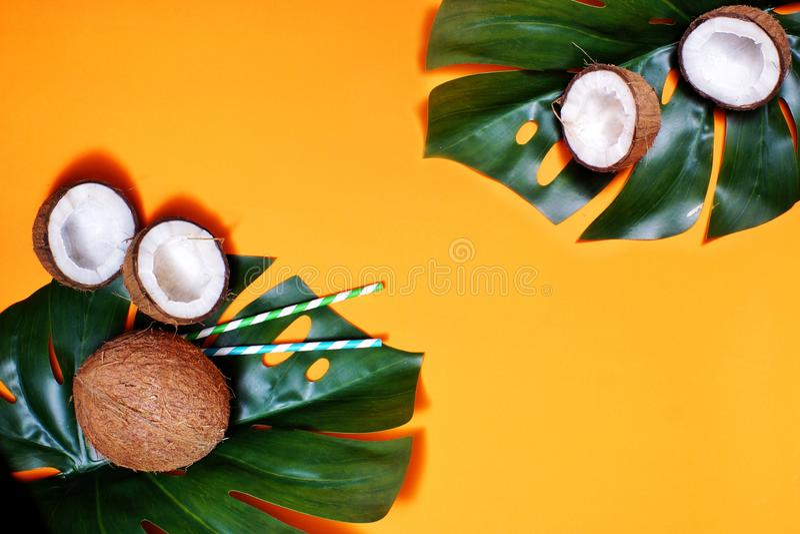 кокосы и тропические лист завода monstera с на оранжевой предпосылкой Плоский слой, взгляд сверху, космос экземпляра Здоровый вар стоковое изображение