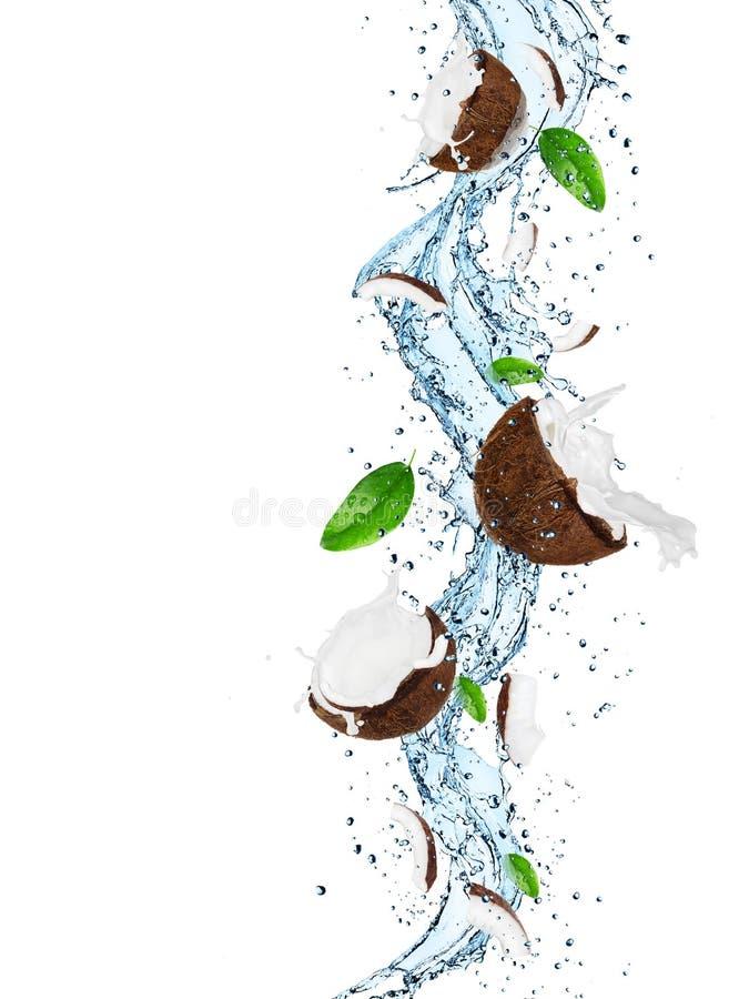 Кокос в выплеске воды стоковые изображения