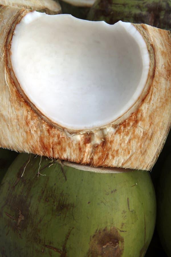 Кокос с пульпой стоковая фотография