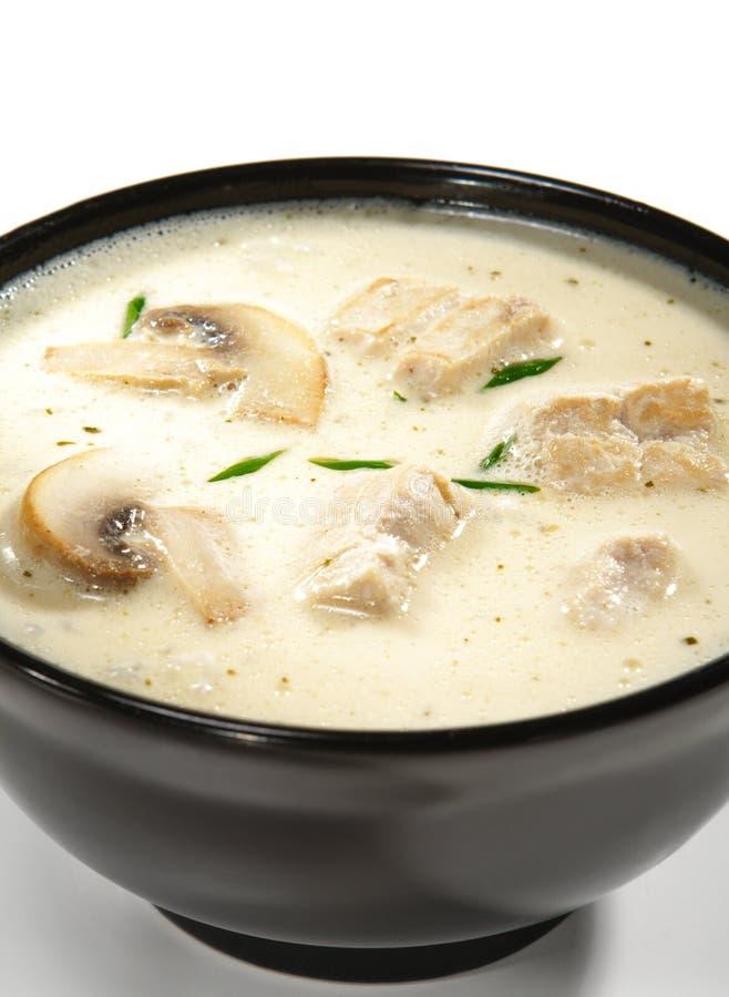 кокос dishes суп молока тайский стоковая фотография rf