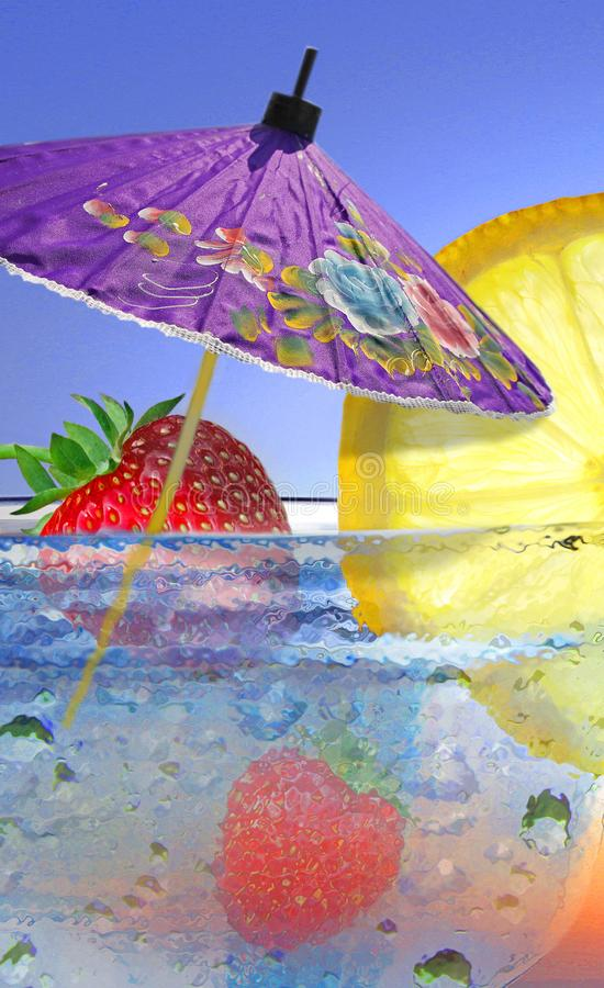 Коктеиль плодоовощ лета стоковое изображение rf
